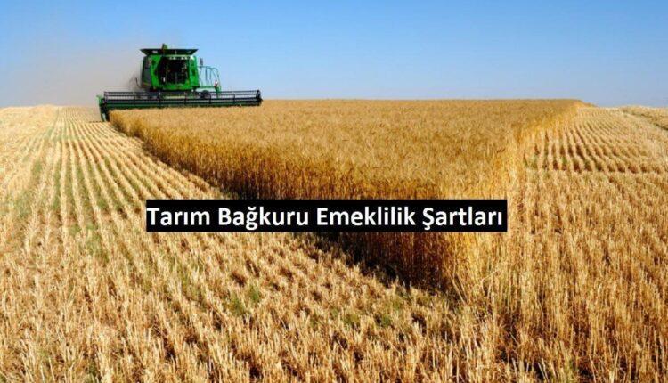 çiftçi bağkuru emeklilik tablosu